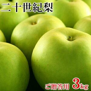 二十世紀梨(20世紀梨)3kg詰(8玉前後入/2L〜3Lサイズ) 鳥取県産 最高ランク赤秀(ご贈答用) 送料無料