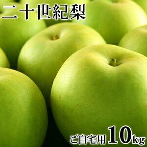 二十世紀梨(20世紀梨)10kg詰(32玉前後入/L〜3Lサイズ) 鳥取県産 訳あり(ご自宅用) 送料無料