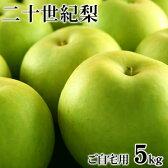 二十世紀梨(20世紀梨)5kg詰(16玉前後入/サイズ不揃い) 鳥取県産 訳あり(ご自宅用) 送料無料
