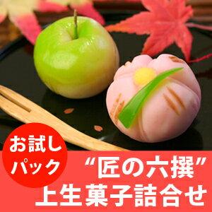 匠の六撰 上生菓子詰合せ(お試しセット ご自宅用簡易パッケージ) 和菓子 送料無料