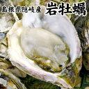 """濃厚ぷりぷり""""海のミルク""""!殻を開けてお届け可能♪岩牡蠣 1kg前後(250g前後×4個) 島根県..."""