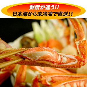 松葉ガニファミリーパック