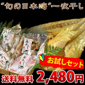 旬の日本海一夜干しお試しセット(ご自宅用簡易パッケージ)送料無料