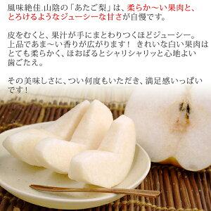 あたご梨5kg詰(4〜8玉入)鳥取県産訳あり(ご自宅用)大玉サイズ送料無料