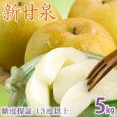 新甘泉(しんかんせん)5kg詰(10〜14玉入) 鳥取県産 梨 赤秀 送料無料
