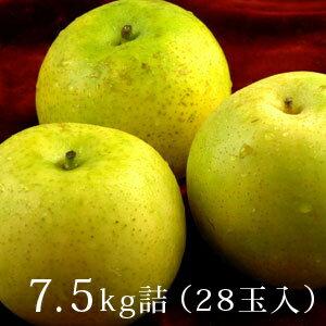 あいみ燦ゴールド(ゴールド二十世紀梨)7.5kg詰(28玉入)鳥取特産秀品送料無料