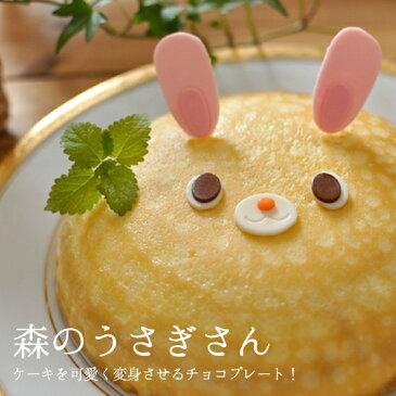 誕生日ケーキ キャラクター うさぎ 立体ケーキ 森のうさぎさん チョコプレート 飾り オーナメント【あす楽対応】