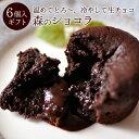 バレンタイン チョコレート ケーキ ギフト 誕生日プレゼント フォンダンショコラ チョコ ギフト スイーツ 森のショコラ6個入 2021 バレンタイン限定ラッピング