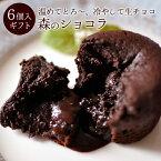 チョコレート ギフト フォンダンショコラ「陽だまりが恋したチョコレート」森のショコラ6個入【あす楽対応】