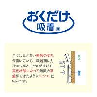 サンコーおくだけ吸着吸着壁に貼るフォトフレーム柄違い2枚入ネコ/レースブルー/レースベージュ/ナチュラルガーデン日本製