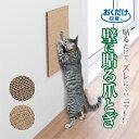 リッチェル NEWコロル 猫のツメみがき本体セット 【ペット用品】