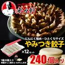 餃子 国産【 岡田屋餃子 生餃子 240個入り 約24人前
