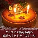 クリスマスバージョン濃厚ベイクドチーズケーキ