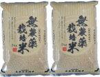 元年産・無農薬玄米5kg×2袋--茨城県産こしひかり--無農薬無化学肥料栽培