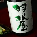 羽根屋 特別純米酒 瓶燗火入れ 720ml 富美菊酒造 日本酒 地酒 富山県