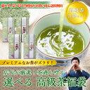 茶通も唸る!選べる高級茶福袋 100g×3個 敬老の日 プレ...