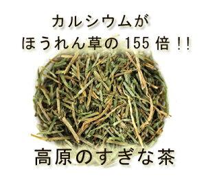 腎臓病 スギナ茶