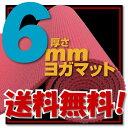 【送料無料!】【さらに専用メッシュケースをプレゼント!】厚さ6mm ヨガマットクッション性抜群!! (厚さ6mm ヨガマット yogamat)