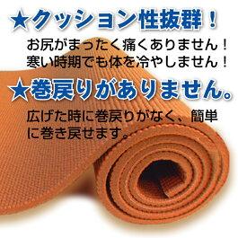 【最安値に挑戦!】【今ならさらに専用メッシュケースをプレゼント!】厚さ8mmヨガマットクッション性抜群!!(厚さ8mmyogamat)