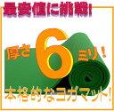 【専用メッシュケースをプレゼント!】厚さ6mm ヨガマットクッション性...