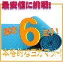 【最安値挑戦!】【レビュー書き込みでさらに専用メッシュケースをプレゼント!】厚さ6mm ヨガ...
