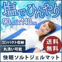 冷却マット 90×140cm 「快眠ソルトジェルマット」(ひ...