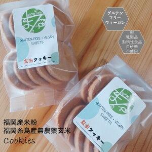 【送料込み】グルテンフリー ビーガン 玄米 米粉で作ったクッキーセットです。小麦粉 卵 乳製品 動物性油 不使用。アレルギー対応 ダイエット ヴィーガン 授乳中 ギルトフリー