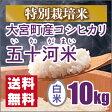 【特別栽培米】新米 京都丹後産 大宮町五十河特別栽培米コシヒカリ 白米10kg(28年産)
