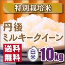【特別栽培米】新米京都丹後ミルキークイーン白米10kg【29年産】