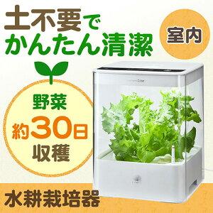【送料無料】グリーンファーム CUBE UH-CB01G1(水耕栽培器・LED照明)[UH-C…