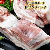 豚バラブロック 国産 豚肉 豚 豚ばら バラ ブロック たんば産ポーク お取り寄せ グルメ おうちごはん 500g