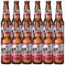 [送料無料] メキシコお土産 | テカテビール 12本セット【R82026】