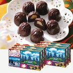 [送料無料] バリ・インドネシアお土産 | ジャカルタ マカデミアナッツチョコレート 6箱セット【176069】