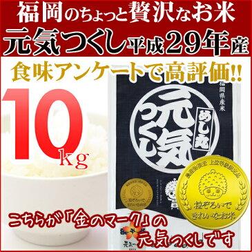元気つくし 10kg(5kg×2) 金のめし丸マークあり 福岡県産 平成29年産