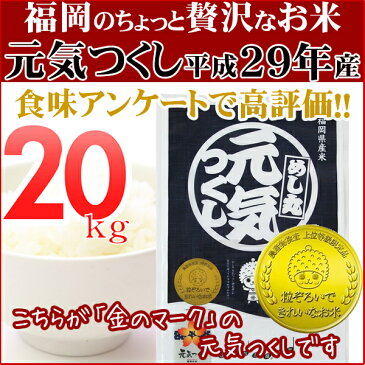 元気つくし 20kg(5kg×2) 金のめし丸マークあり 福岡県産 平成29年産