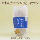 5個セット●ヤムヤム 玄米ビーフン アジアの文化が生んだお米の麺 やわらかでつるっとしたコシがおいしい