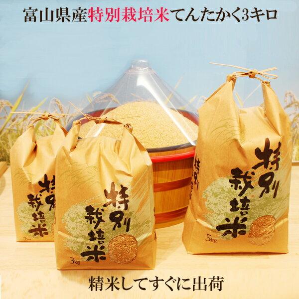 ●令和元年度産 富山県産 特別栽培米てんたかく 玄米3kg【送料無料】玄米・1分搗き...
