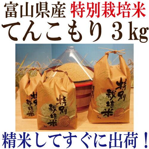 ●令和2年度産 富山県産 特別栽培米てんこもり 玄米3kg【送料無料】玄米・1分搗き...