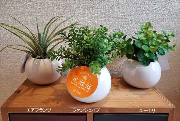 送料無料 人工観葉植物造花まあるくてかわいい光触媒グリーンラウンドポット