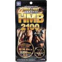 ビルドファイトHMB2100