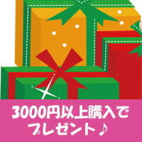 【3千円以上お買い上げの方にお一つプレゼント!】10P09Mar12