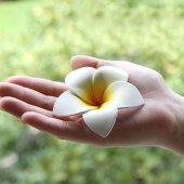 格安★スポンジプルメリア(ホワイト)★激安【メール便190円】お部屋に飾るだけでアジアンリゾート。スポンジ素材でふんわり柔らか♪手の平サイズの可愛い造花、フランジパニ。