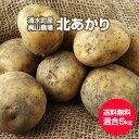 【送料無料】【北海道 十勝清水産・梶山農場】[北あかり 5kg](2L〜S混合)