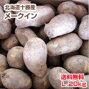 【送料無料】【新じゃが】【じゃがいも】【北海道十勝産】[メークイン](L・20kg)