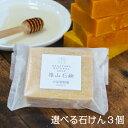 【ミツバチ農家が作った よりどり3個 篠...