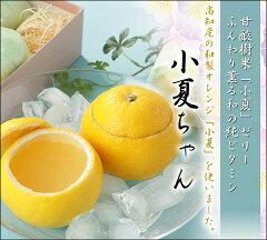 【夏限定】小夏ちゃん3個化粧箱入り【お中元】【無添加】【新食感ゼリー】