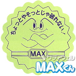 MAXBOXタイプ