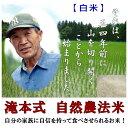 【無農薬白米】 10kg 平成30年 新米 福井県産 こしひかり 【無...