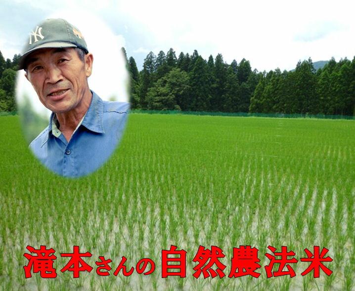米・雑穀, 玄米  5kg2 54 smtb-TD