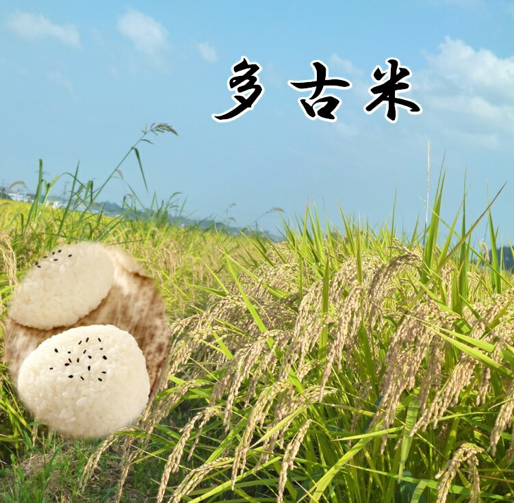 米・雑穀, 白米  5kg2 smtb-TDsaitama